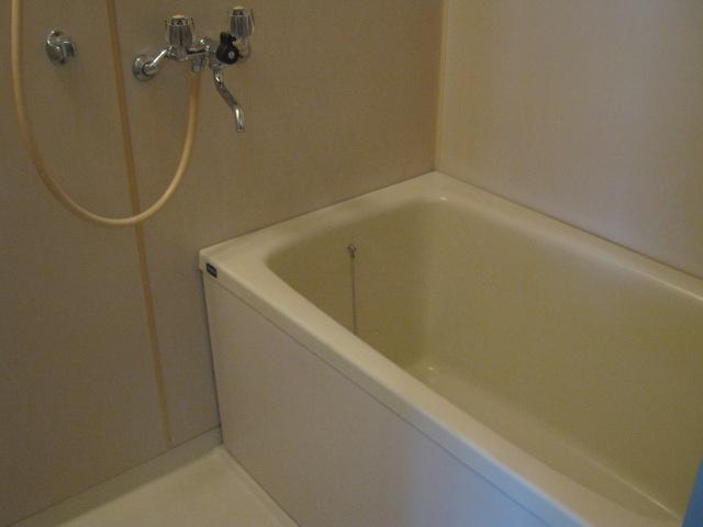 小玉ハイツ 102号室の風呂