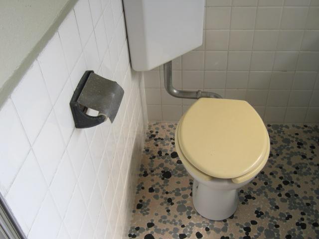 小玉荘 204号室のトイレ
