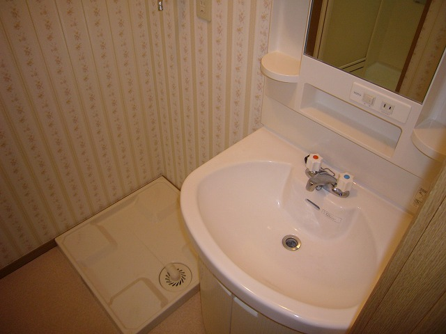 ライフモリ2号館 202号室の洗面所