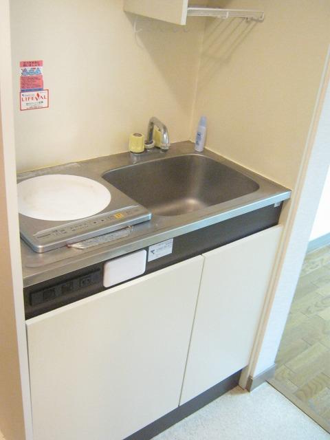 メゾンドフローラ 202号室のキッチン