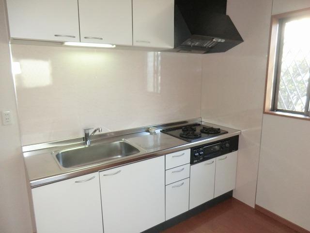 タウニー作野 B 202号室のキッチン