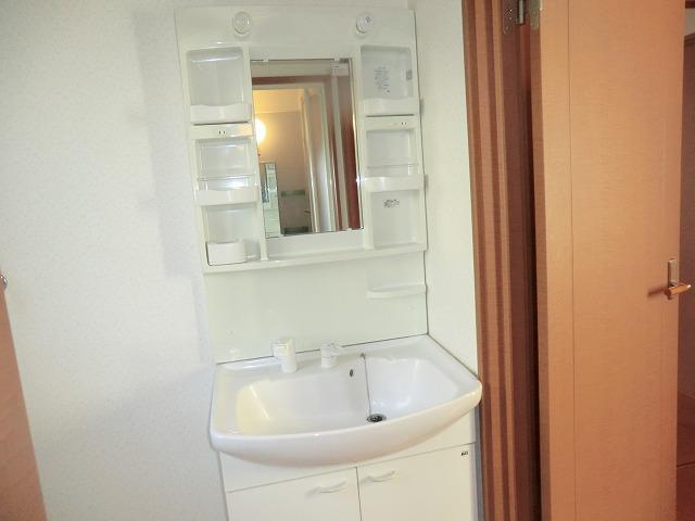 タウニー作野 B 202号室の洗面所