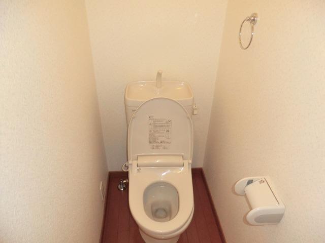 タウニー作野 B 202号室のトイレ