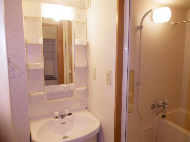 サンハイム久保田 202号室の洗面所