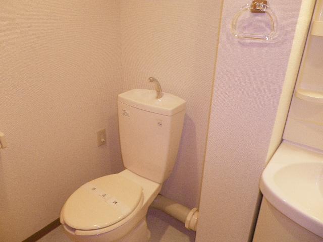 サンハイム久保田 202号室のトイレ