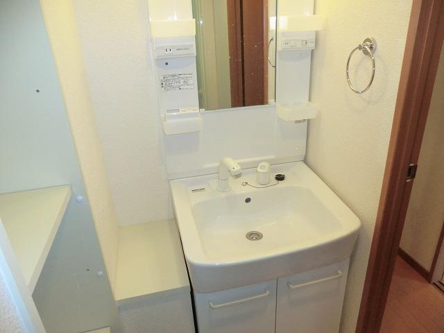プレイン安城 301号室の洗面所