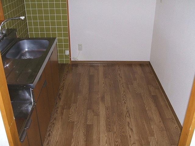 フレスカ伊吹 201号室のキッチン