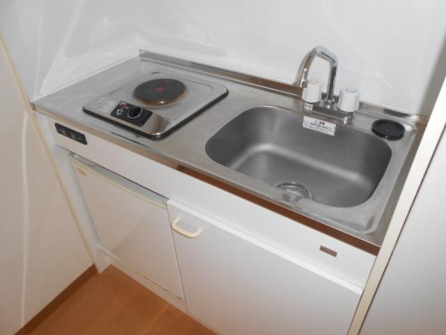 サンテール亀島 3B号室のキッチン