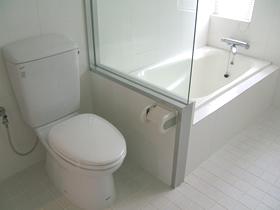 メゾン・ド・レスポワール 403号室のトイレ
