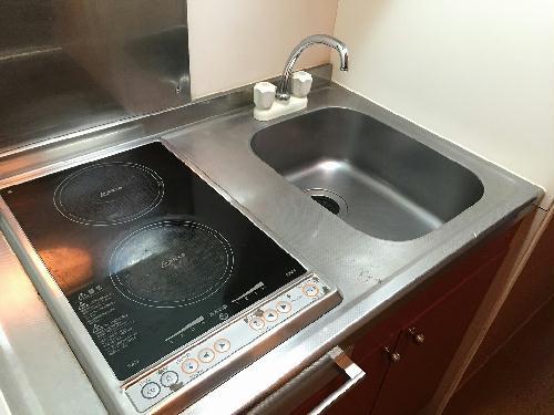 レオパレスヒルズ日野 201号室のキッチン