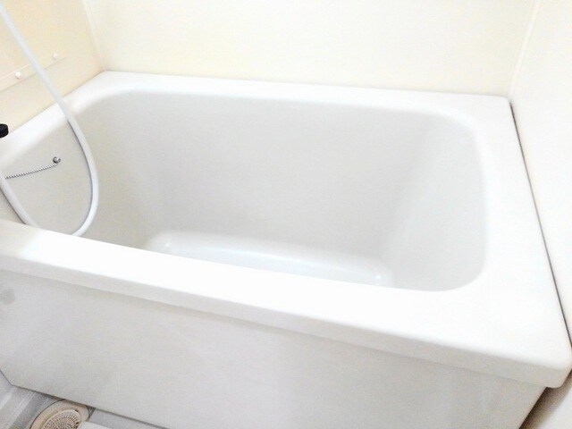 サンライフホリゴメB 02030号室の風呂