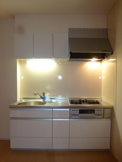 クリアネス堰下 01030号室のキッチン