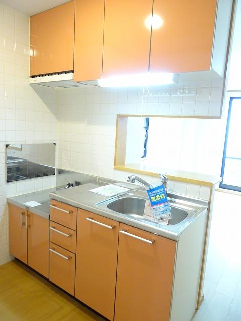 プランタンフルールB 01010号室のキッチン
