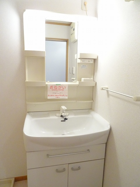 プランタンフルールB 01010号室の洗面所