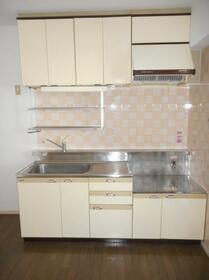 ブルーリーフ・K 0101号室のキッチン