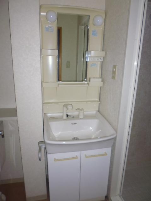 ランブラス桂水築町 103号室の洗面所