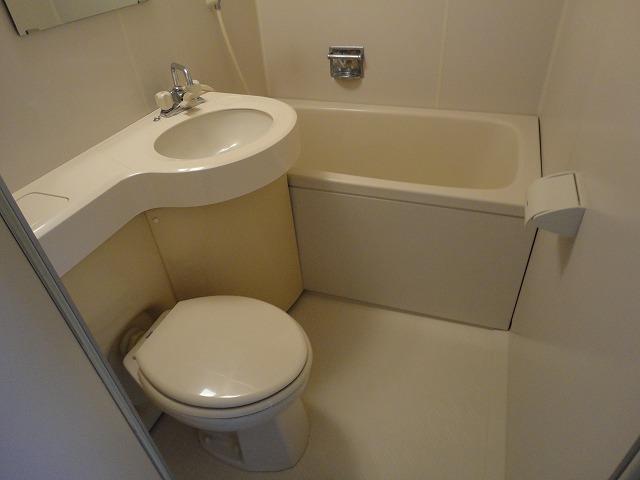 ヴィベールⅡ 502号室の洗面所