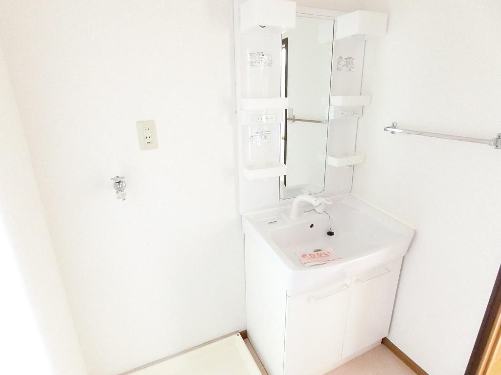 ニュークレストールT・DⅡ 02010号室の洗面所