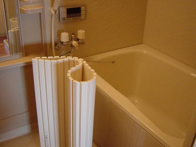 ルーエンハイムA 101号室の風呂
