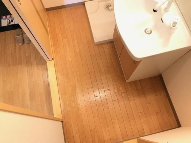 サンライズ桜 101号室の洗面所