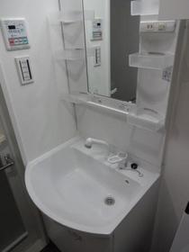 ブライズ蒲田WEST 103号室の洗面所