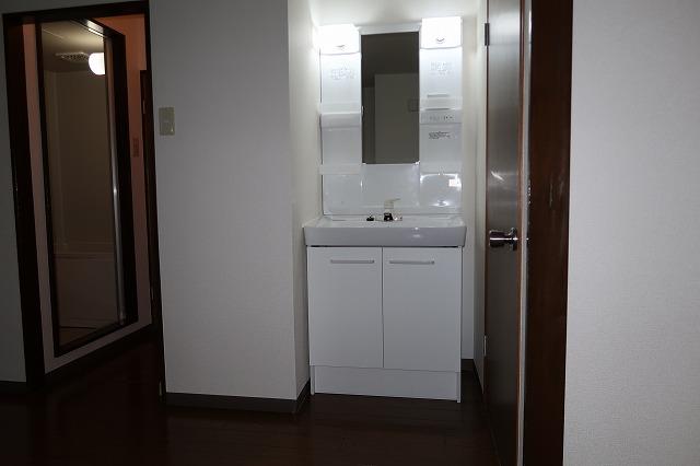 クリーンハイツさくら 01050号室の洗面所