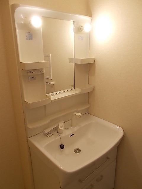プリムローズN&M B 02010号室の洗面所