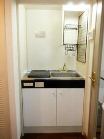 ネオマイム新子安弐番館 00305号室のキッチン