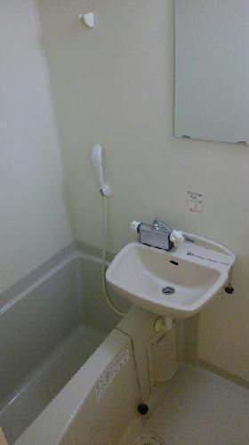 レオネクストウインズ立野 101号室の風呂