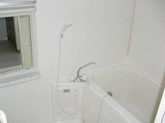 シュネーフェストⅡ 01010号室の風呂