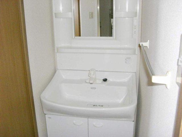シュネーフェストⅡ 01010号室の洗面所