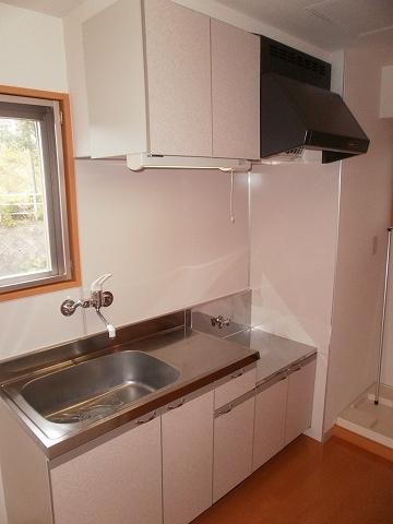 ディアⅣ 101号室のキッチン