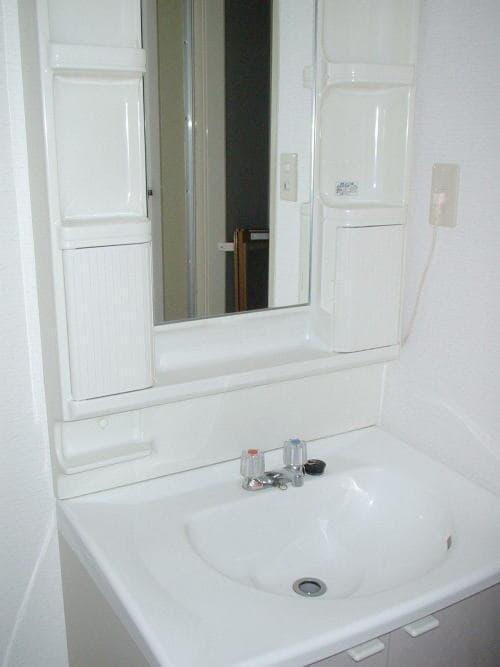 ドリーミー山中C 02030号室の洗面所