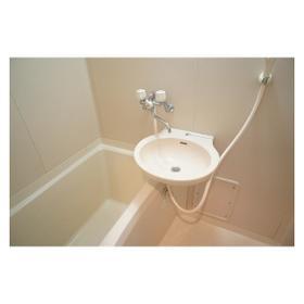 ウェルネス高津 203号室の洗面所