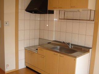 クレアハイム・g 00205号室のキッチン