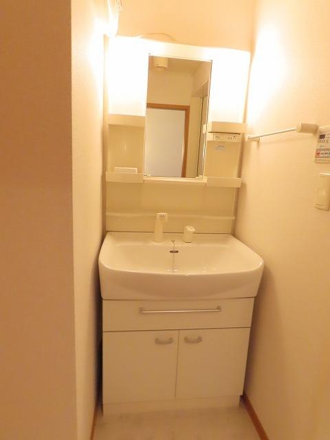 プラムⅡ 02020号室の洗面所