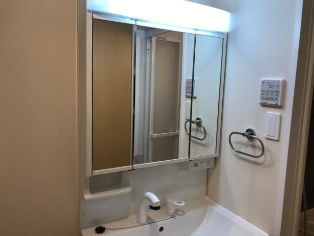 フローラ小石川 405号室の洗面所