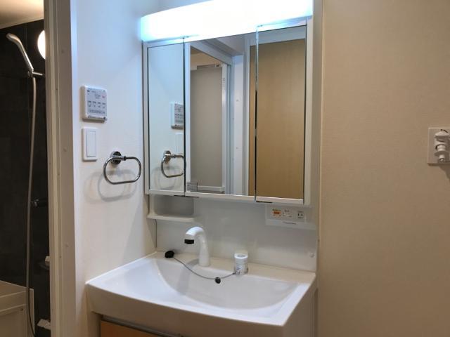 フローラ小石川 406号室の洗面所