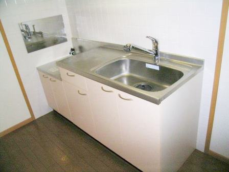 ヴィラ・シュトラーセ 02040号室のキッチン
