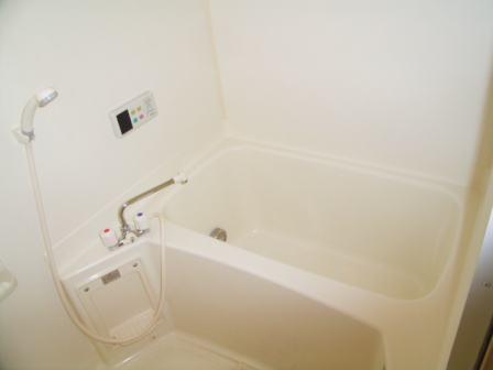 ヴィラ・シュトラーセ 02040号室の風呂