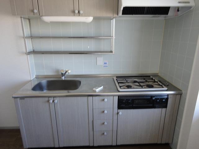 マンション角屋 203号室のキッチン
