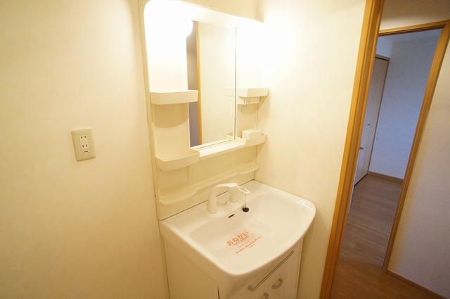 ボヌールフォンテーヌ 03020号室の洗面所