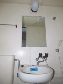 メゾン・ド・トゥール 0709号室の洗面所