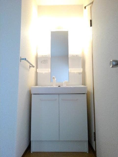 カルムメゾンシミズA 02010号室の洗面所
