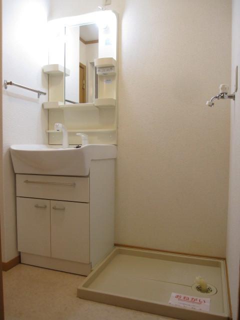 カレント 01030号室の洗面所