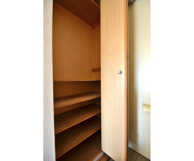 エステ-トピア黒沢 209号室の玄関