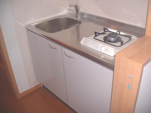 サニーサイド水野 02030号室のキッチン