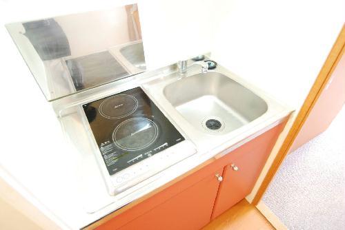 レオパレスアルカディア 204号室のキッチン