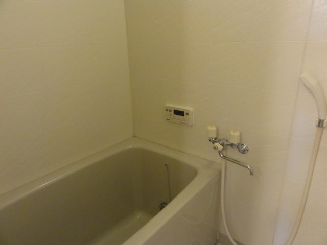 イラーヴァティ C-5号室の風呂