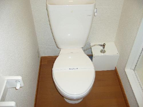 レオパレス小野 203号室のトイレ